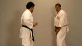 Karate sweeps with Val Mijailovic 2/4