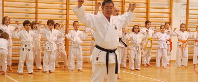 Treningi w wakacje, Letnia Akademia Karate