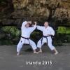 Hanshi uczy w Irlandii