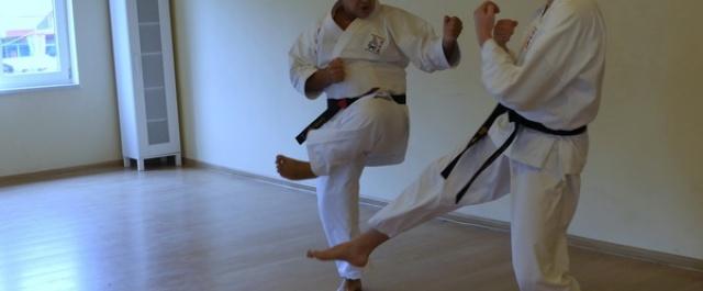 I część zdjęć z Letniej Akademii Karate