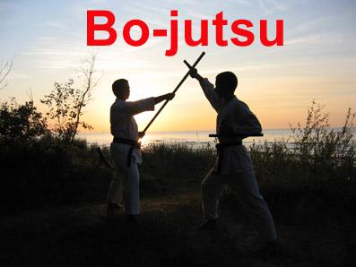 bo-jutsu tonfa-jutsu