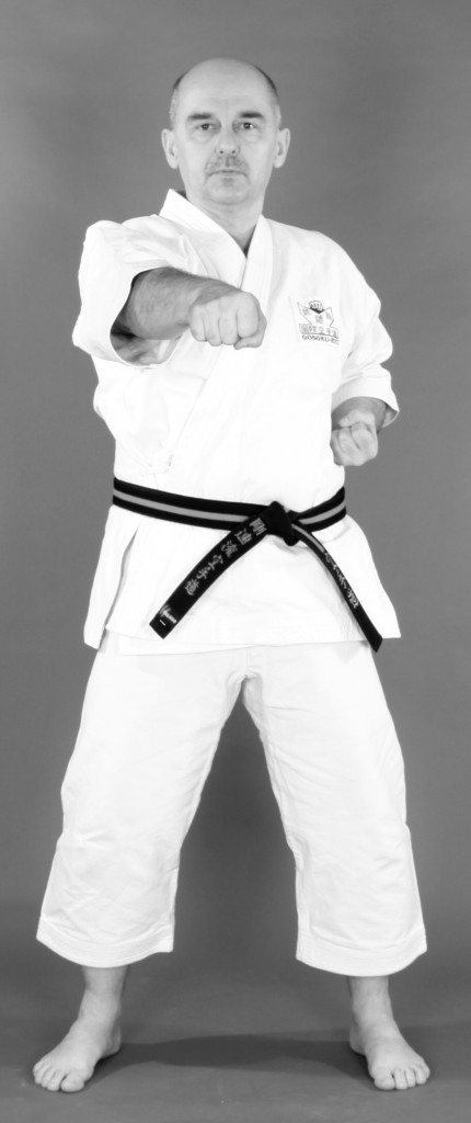 karate shotokan gosokuryu