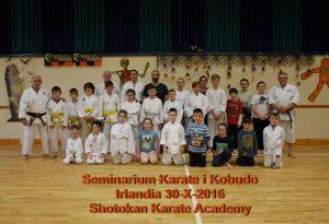 Karate Shotokan Kobudo Seminar - Ireland 2016