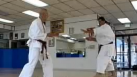 World Karate Champion – The Power of Gosoku-ryu (part II)