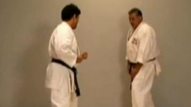 Karate sweeps with Val Mijailovic 2/4