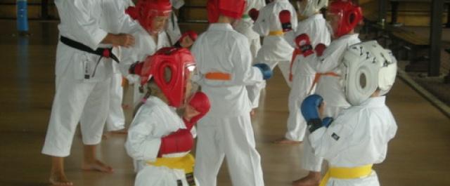 Zapisy i początek treningów