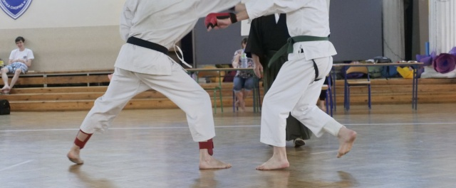 Warszawski Turniej Karate