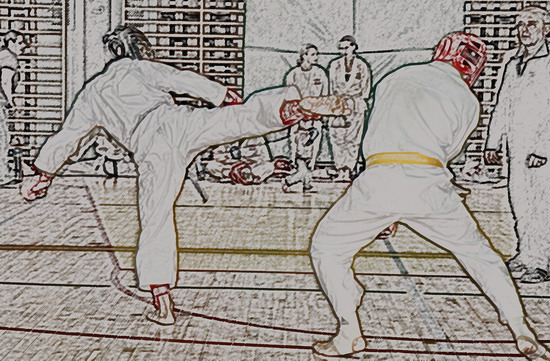 kumite karate kyu dan egzamin