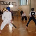 karate kobudo kenjutsu chnabara battodo tameshigiri