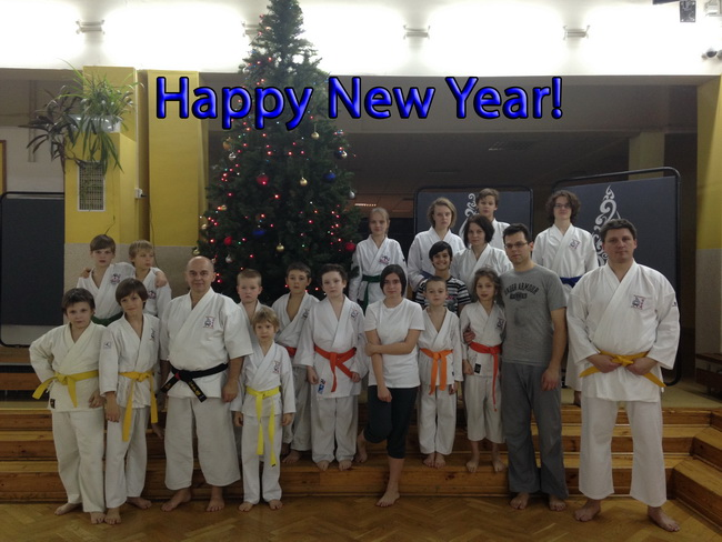 new year karateka