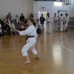 Warszawski Turniej Karate i Kobudo